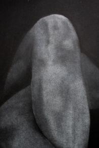 Leg detail 2