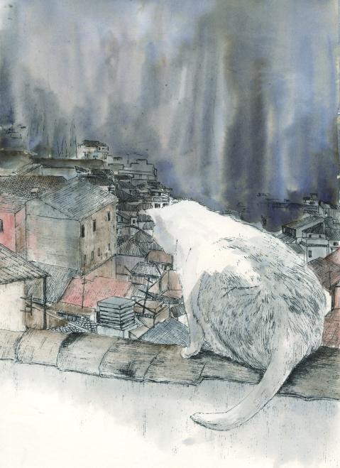 White Cat 001