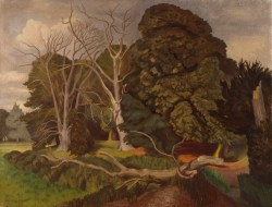 Nash, John; The Fallen Tree; https://www.royalacademy.org.uk/art-artists/work-of-art/O1649 Credit line: (c) The Artist's Estate (c) Royal Academy of Arts / Photographer credit: Prudence Cuming Associates Limited /